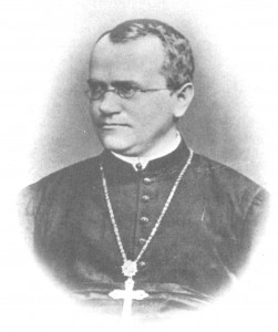 отец Грегор Мендел (Gregor Johann Mendel) австрийски монах и ботаник